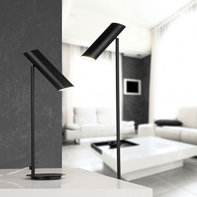 LINK-Black-Bronze-floor-lamp-faro