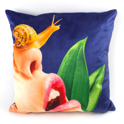 cushion-Snail-seletti