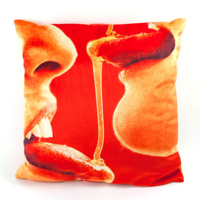 cushion-honey-seletti