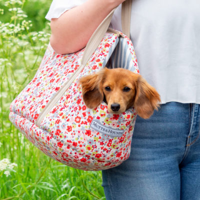 mutts-and-hounds-Carrier-Posie