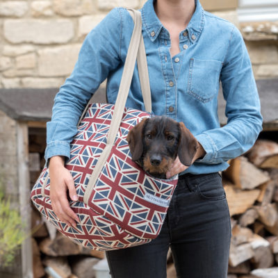 mutts-and-hounds-Carrier-Union-Jack