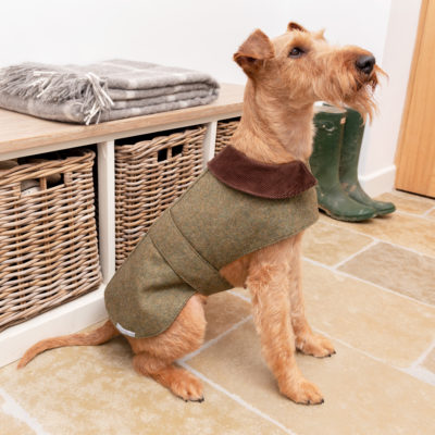 mutts-and-hounds-Coat-Tweed-Forest-Green