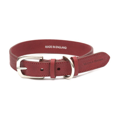 mutts-and-hounds-Collar-Grape