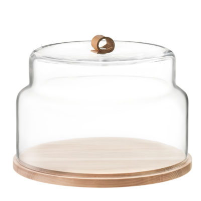 utility-dome-and-ash-base-glass-clear-lsa-international