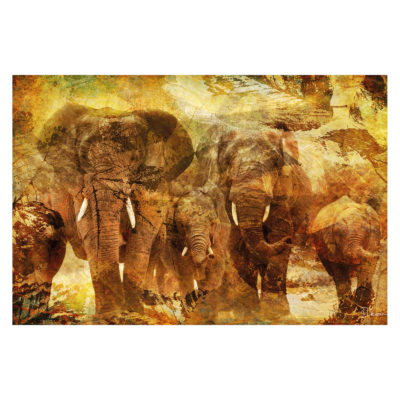 elephants-aluart-mondiart-wall-art