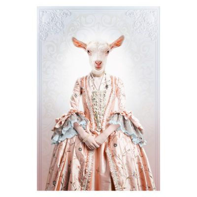 royal-lady-goat-aluart-mondiart-wall-art