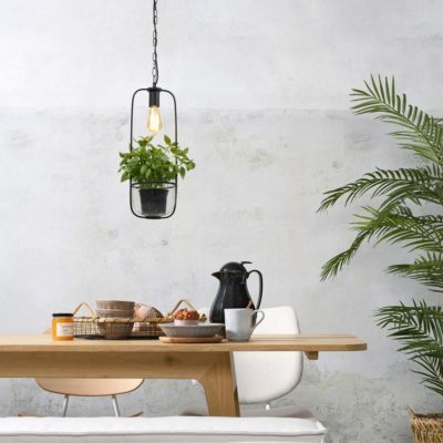 black hanging lamp/plant holder, Florence, it's about Romi