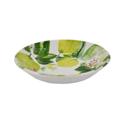hand made soup bowl with lemon by Arcucci