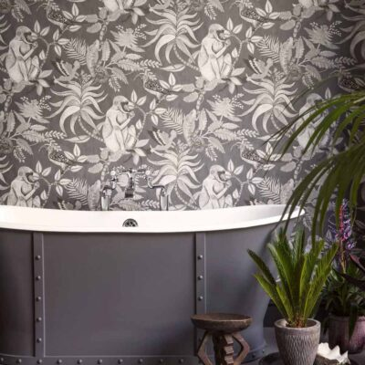 Ardmore Savuti grey wallpaper with baboons by Cole & Son