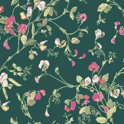 Botanical botanica sweet pea wallpaper by Cole & Son