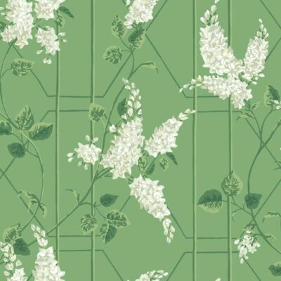 Botanical botanica wisteria wallpaper by Cole & Son
