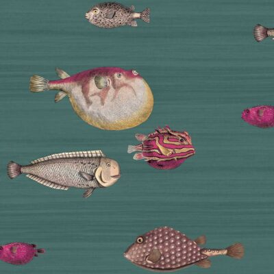 Fornasetti acquario, green wallpaper with fishes by Cole & Son