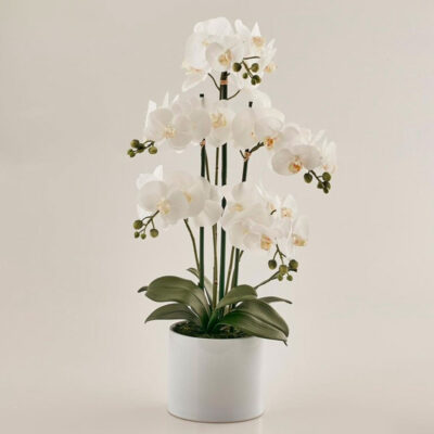 artificial white orchid with vase white by EDG