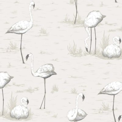 flamingos wallpaper by Cole & Son