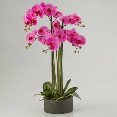 artificial fuchsia orchid with vase by EDG
