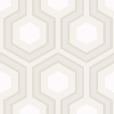 hicks grand wallpaper by Cole & Son