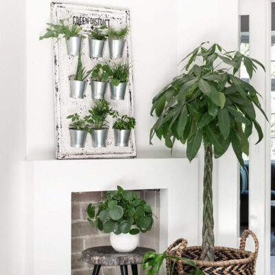 white Teakwood wallrack with 9 pots by Must living