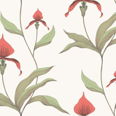 orchid wallpaper by Cole & Son