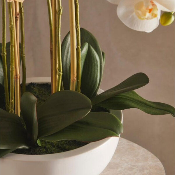 artificial white orchid plant vase white by EDG