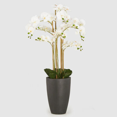artificial white orchid with vase by EDG