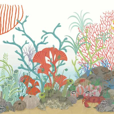 Whimsical Archipelago border wallpaper by Cole & Son