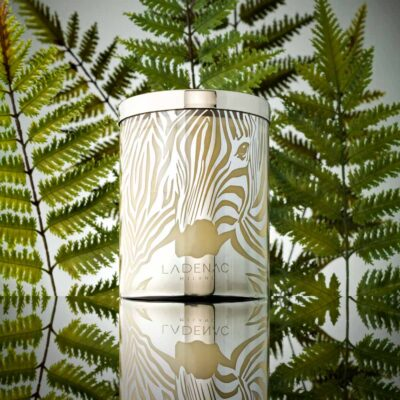 Africa camouflage zebra candle by Ladenac