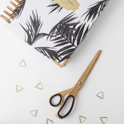 Brass scissors by Hello Day