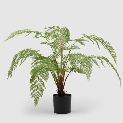 Artificial Felce Chic Plant H63 by EDG