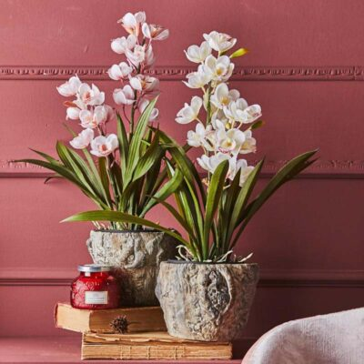 artificial Orchid set of 2 white and pink by EDG