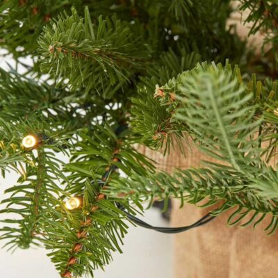 Christmas Pine Tree Luxe Green with LED h100 by EDG