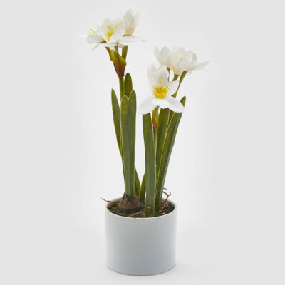 artificial White Narcissus by EDG