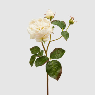 artificial english rose dee ivory H57 by EDG