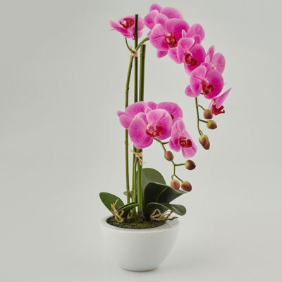 artificial orchid fuchsia with vase by EDG