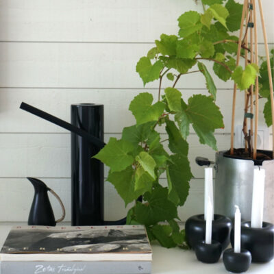 Brush black watering can by Born in Sweden