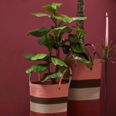Fig Artificial Plant H92cm