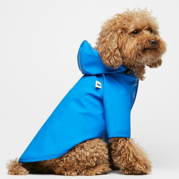 Sarah Blue Dog Raincoat The painter's wife