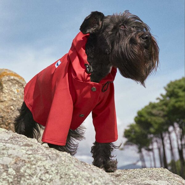 Sarah red Dog Raincoat The painter's wife