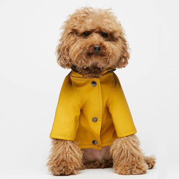 Sarah yellow Dog Raincoat The painter's wife
