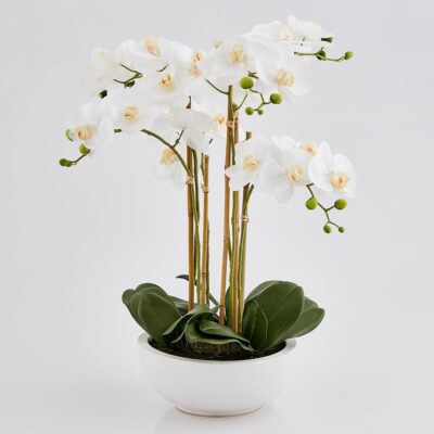 Luxury White Artificial Orchid H64