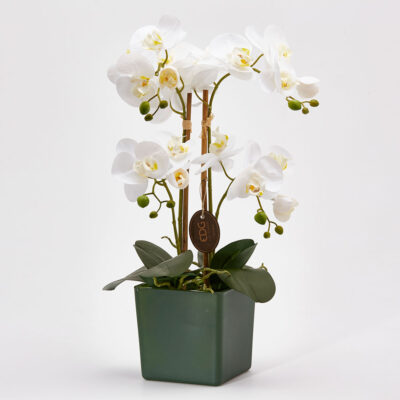 artificial orchid with green vase
