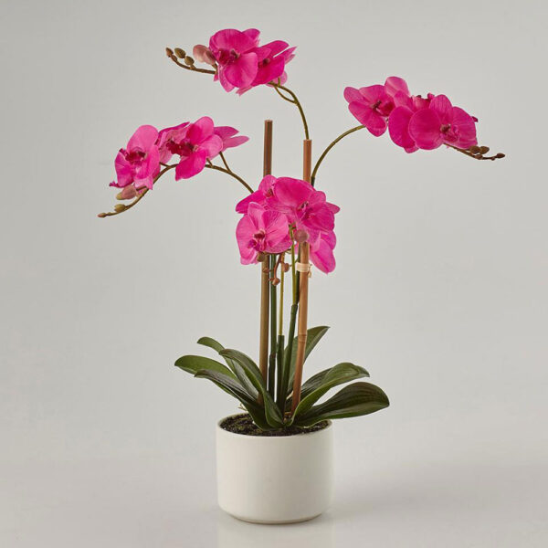 pink artificial orchid h38