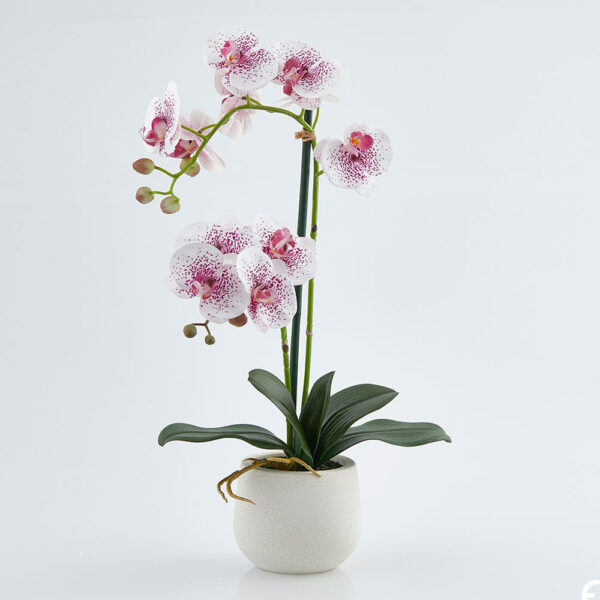 pink white artificial orchid h53