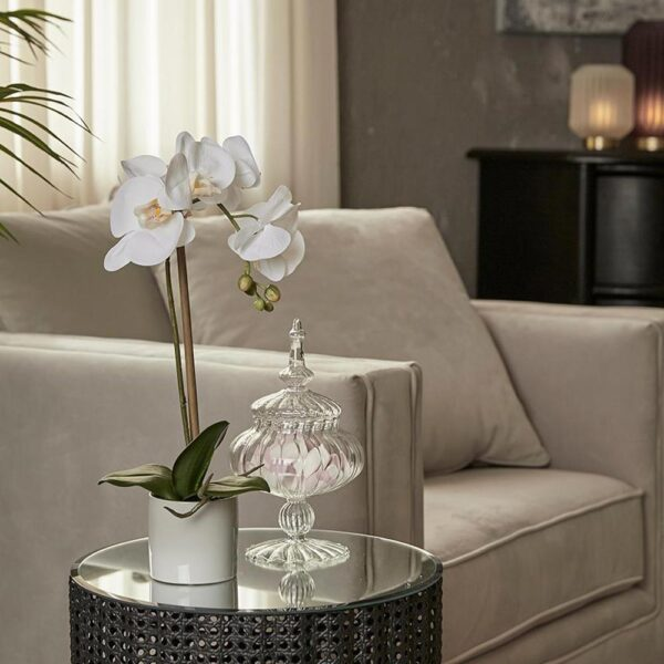 white artificial moth orchid h40