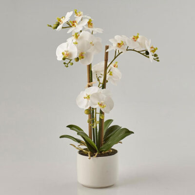 white artificial orchid H38
