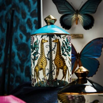 Kruger Scented Candle with Giraffes by Emma J Shipley