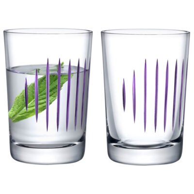 Parrot set of 2 water glasses Clear by Nude