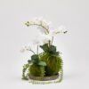 Faux Orchid with Greenery
