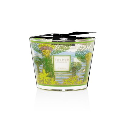 Singapore Baobab Collection Candle