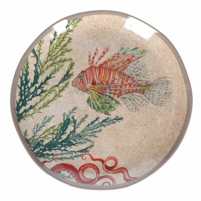 Sea life set 2 salad plates by Rose & Tulipani